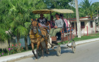 Horses carts are very common on Cuban streets
