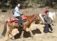 You can ride a horse or walk up to the Tiger Nest Monastery - Paro, Bhutan