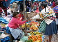 The Andean Market at Pisac,  Peru