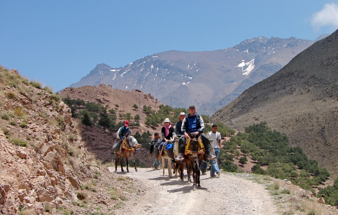 Hike or ride mules up to the Tizi ném Zik Pass (2,489m),  Toubkal