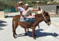 Donkey riding in Cyprus